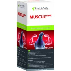 MUSCUL DRINK 250ML