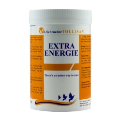 EXTRA ENERGIE 300G